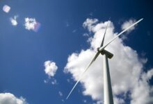 Green energy isn't viable without subsidies: Audit